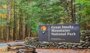 Smoky Mountain Bliss