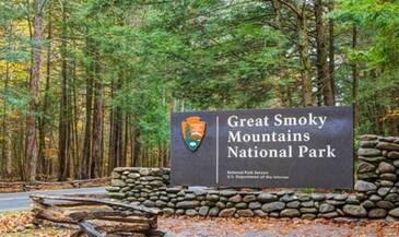 Smoky Bear Haven