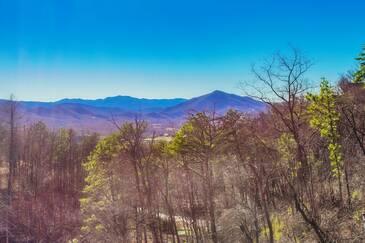 Mountain Tyme