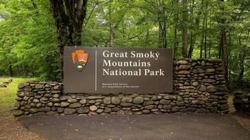 The Smoky Pines