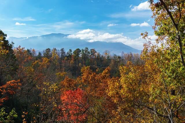 Mountain Dew Gatlinburg Chalets Cabin Rentals Tennessee
