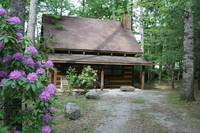 Love Shack 1 bedroom cabin in  This cabin is located 12 miles east of downtown Gatlinburg.