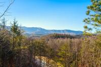 Country Bear Hideaway 1 bedroom cabin in  Located 12 miles from downtown Gatlinburg on HWY 321 towards Cosby
