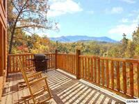 I Love View Too 2 bedroom cabin