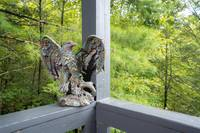 Eagle's Nest Hideaway