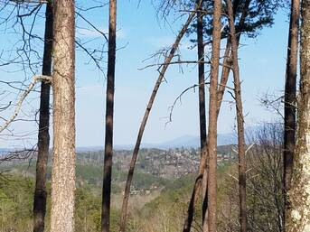 Taken at Owl Take The View in Hidden Mountain TN